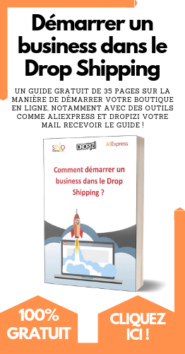business drop shipping ebook gratuit